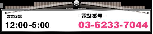 12:00-05:00 03-6233-7044