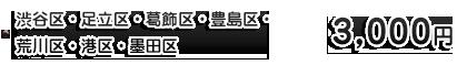 千代田区・中野区・文京区・目黒区・豊島区・世田谷区・杉並区・練馬区 3,000円